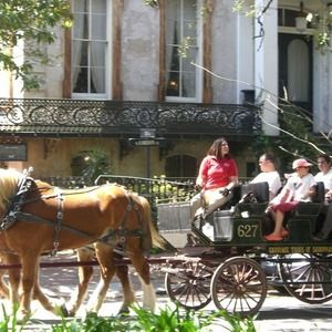 Best Savannah Attractions and Activities: Top 10Best Attraction Reviews