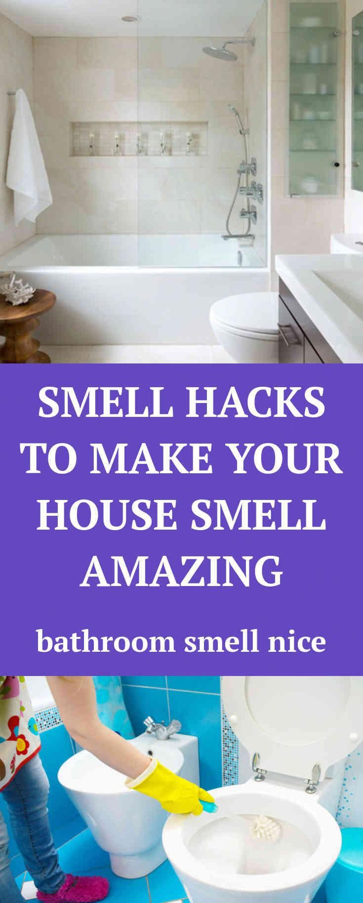 Amazing Learn About Bathroom Smells All What You Need Is Here Wow Homedecor Bathroom Smells Amazing Bathrooms Bathroom