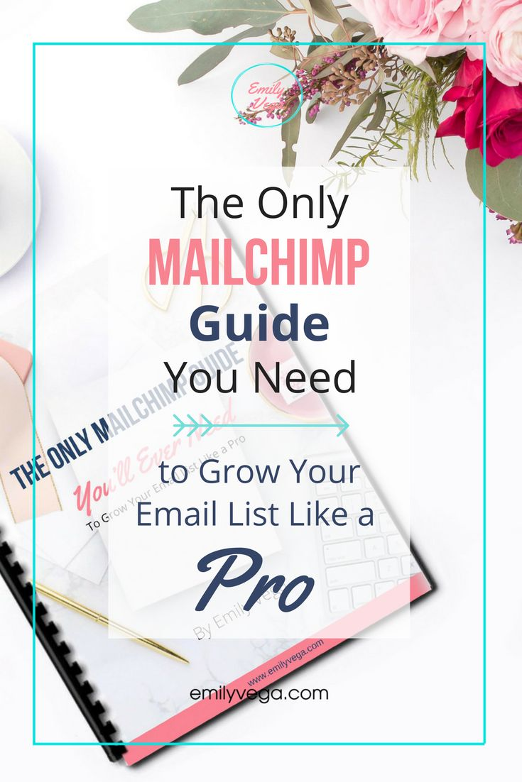 Email marketing with MailChimp can be a beast. Especially when you want to offer multiple freebies as part of your email marketing strategy. This guide is for bloggers with a Wordpress platform who want to integrate opt ins on their website, offer as many freebies as they want, and grow their email list like a pro blogger. Download this guide for FREE!