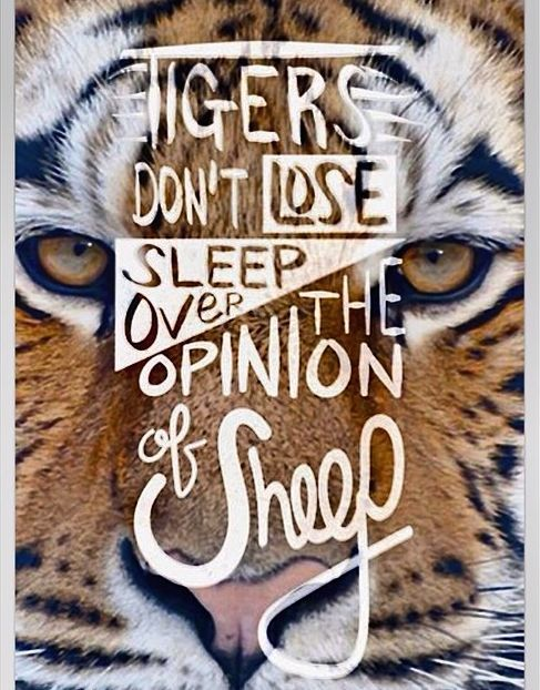 You are a tigress. Who cares what anyone else thinks? #nolimits #beyourself #loveyourself #fitness