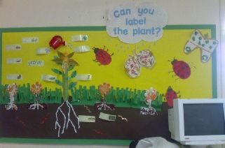 i love this bulletin board because it's interactive!! students can learn about labeling the plants hands on.