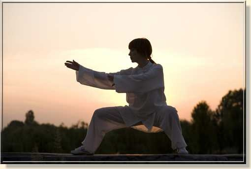 best tai chi instructional videos