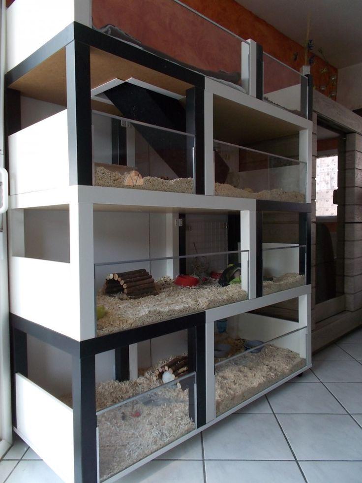 Un meuble à cochon d'inde à fabriquer à petit prix  #animaux #ikea #LACK