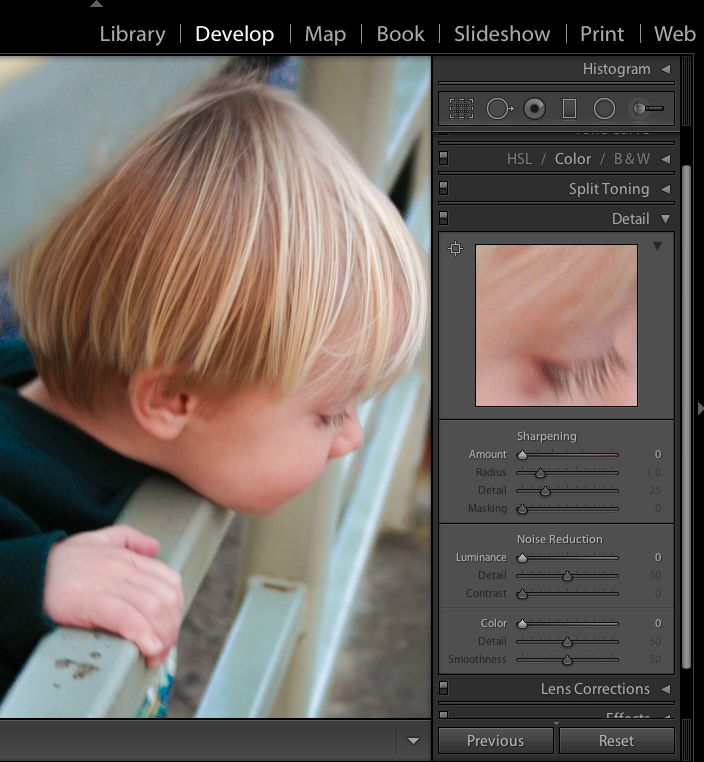 Lightroom Details: Sharpening and Noise Reduction