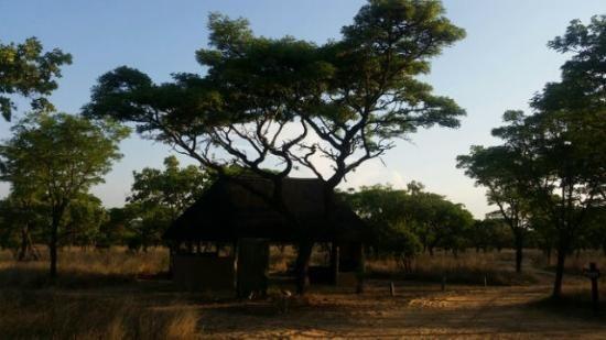 Bush camping - Picture of Matamba bush camp, Vaalwater - TripAdvisor