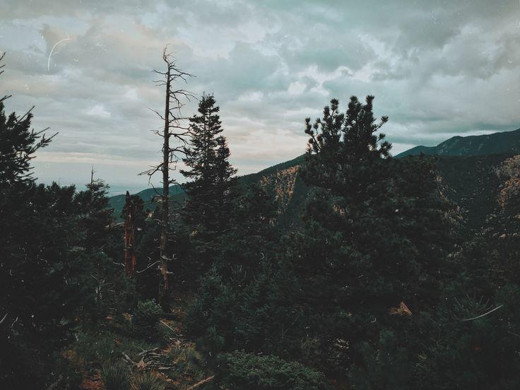 Горы Колорадо. Colorado Mountains. Colorado Nature. Hiking in Colorado. Manitou Incline in Manitou Springs. Manitou Springs in Colorado Springs. Film Camera. 35 mm.