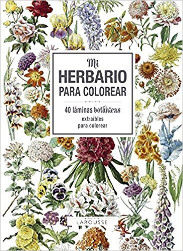 Mi herbario para colorear - Larousse Editorial, Madeleine Avril ...