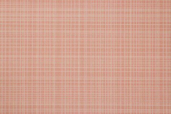 1920 Plaid rosa e bianco tappezzeria Vintage di RosiesWallpaper
