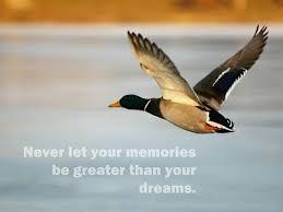 Dream high............
