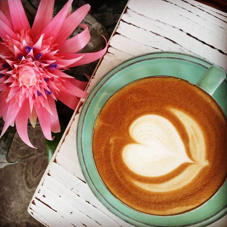 Coffee time at @coconutcoffeehouse ~  Serving Byron Bay Coffee Company.  www.byronbaycoffeeco.com.au