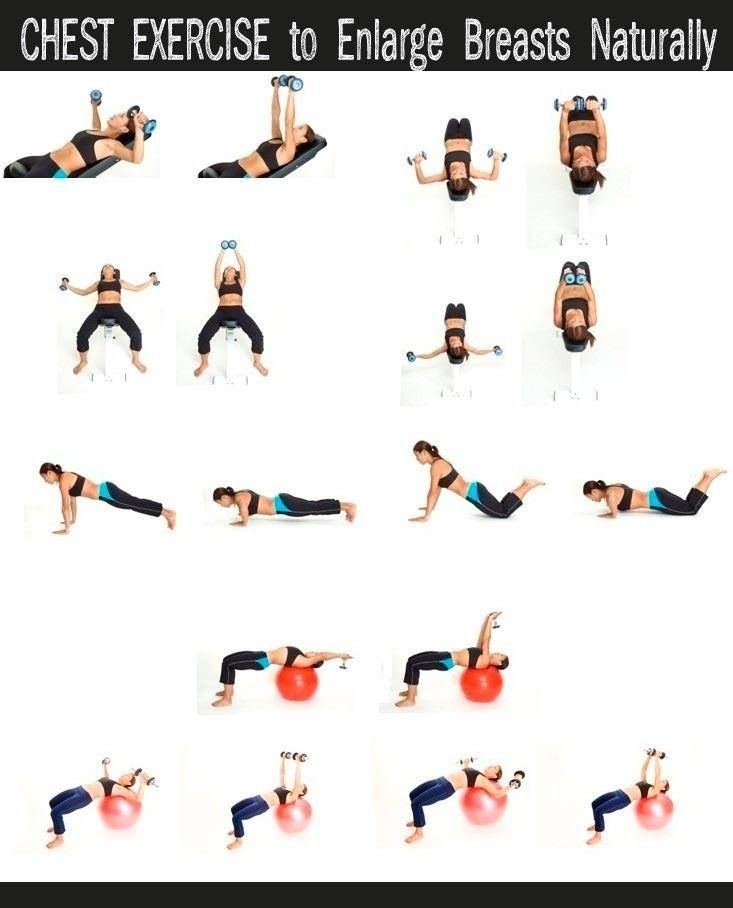 Chest Exercise  Health And Fitness  Chest Workouts -6118