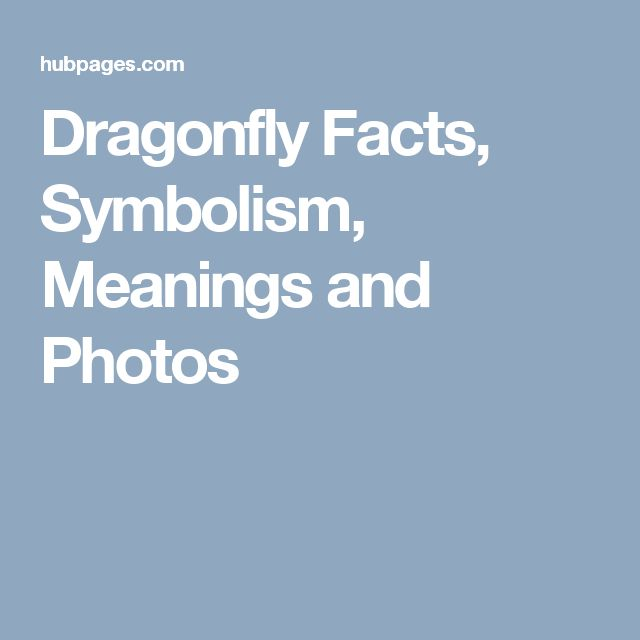 Dragonfly Facts, Symbolism, Meanings and Photos