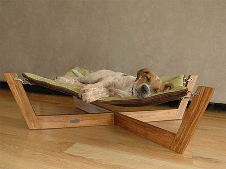 Cool Dog Furniture with wooden material