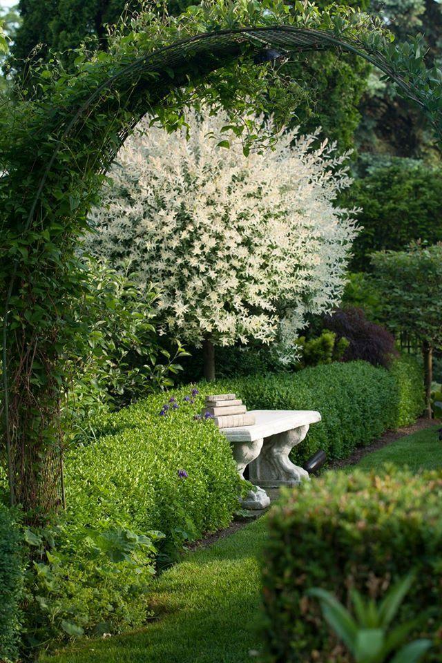 Bank Im Garten Cottage Garden Landscape Design Dream Garden