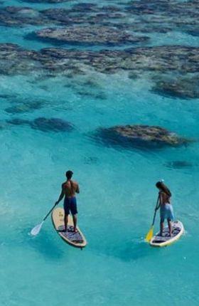Best Tropical Destinations for Water Sport Adventures