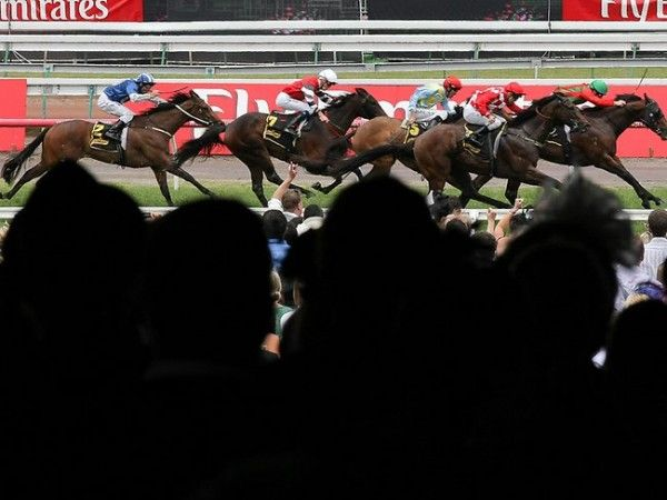 The race that stops a nation - our Sydney Local Looker comments on Melbourne's Cup Day.