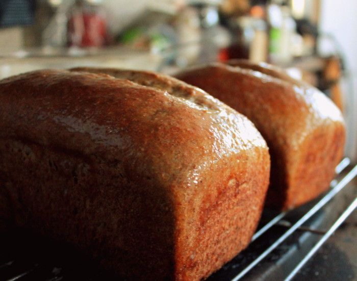 Benefits of Long Sourdough Fermentation -- plus a recipe!! -- GOTTA TRY THIS!! -- The reasons for the longer fermentation are many. With digestive problems on the rise, those with compromised guts are ...