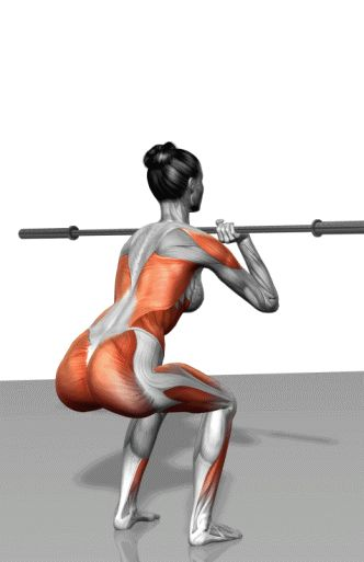 front weight squat