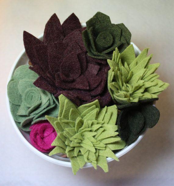 Felt Succulents Set of Seven