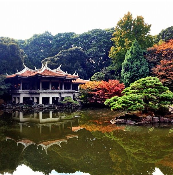 Escape the crowds of #Tokyo with a serene walk through the Shinjuku Gyoen National Garden. Photo courtesy of @ ana_fs via Instagram