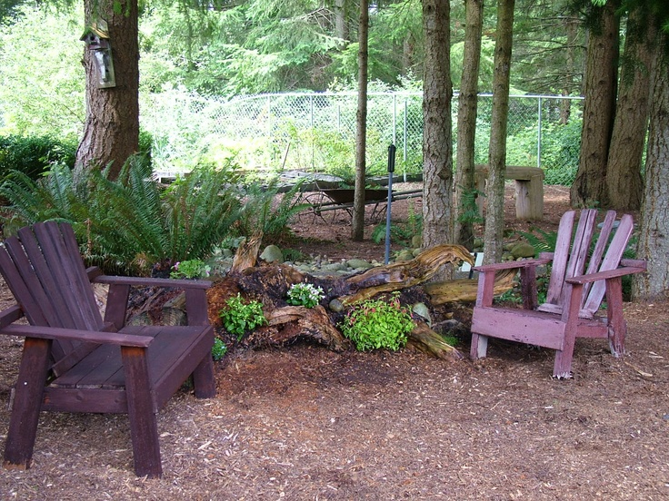 My new woodsy backyard sitting area. Old tree roots with flowers planted in the empty spaces!