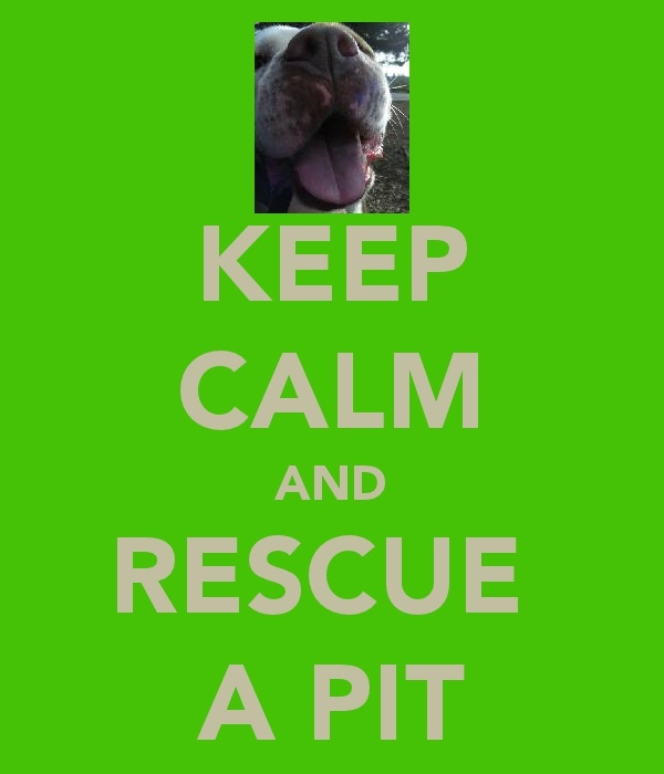 keep calm and rescue