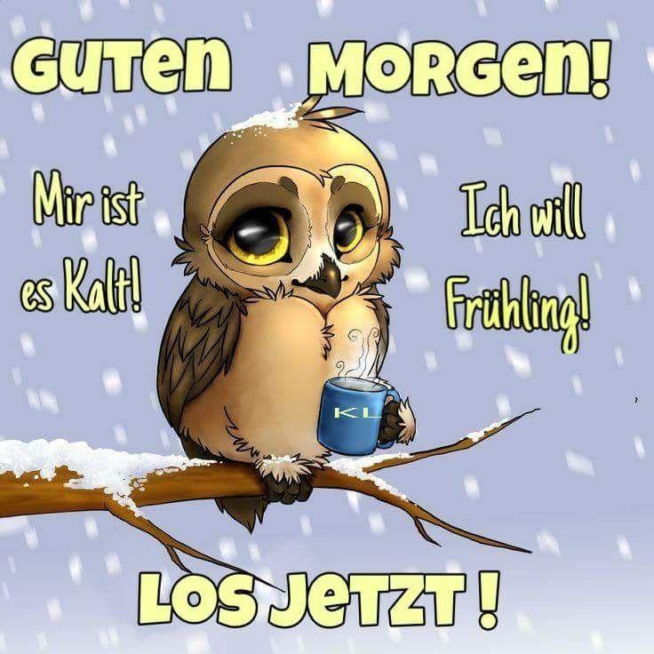 Winter Lustige Guten Morgen Bilder Guten Morgen Lustig