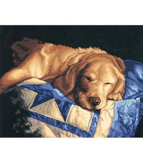 """Paint By Number Kit 14""""X11""""-Afternoon Nap"""