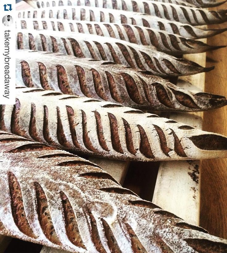 "86 Likes, 1 Comments - ThermoWorks (@thermoworks) on Instagram: ""#Repost @takemybreadaway ・・・ A sea of rye SD bags. Carpal tunnel  caused by scoring anyone? #bread…"""