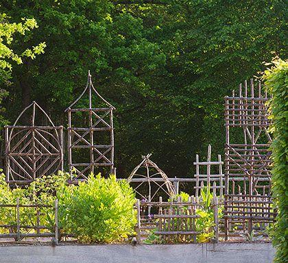 Les simples au jardin médiéval