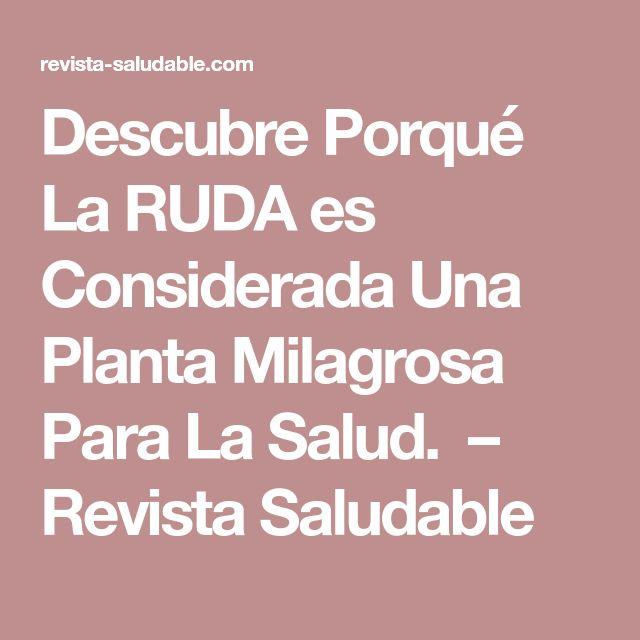Descubre Porqué La RUDA es Considerada Una Planta Milagrosa Para La Salud. – Revista Saludable