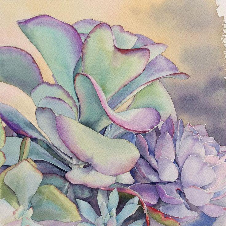 Суккуленты.  Вот такие суккуленты растут в огромных горшках в саду Франсуа в Прео-дю-Перш. Душевный сад. С удовольствием посетила бы еще... Le Jardin François à Préaux-du-Perche. #рисую_все_что_вижу #art #artwork #paint #painting #draw #drawing #watercolor #watercolorpainting #acuarela  #aquarelle #topcreator #art_we_inspire #process_of_creativity #art_dnevnik #inspiring_watercolors #waterblog #arts_help #skrien #fleurs #flowers #succulentus #suculenti #цветы #акварель #суккуленты…