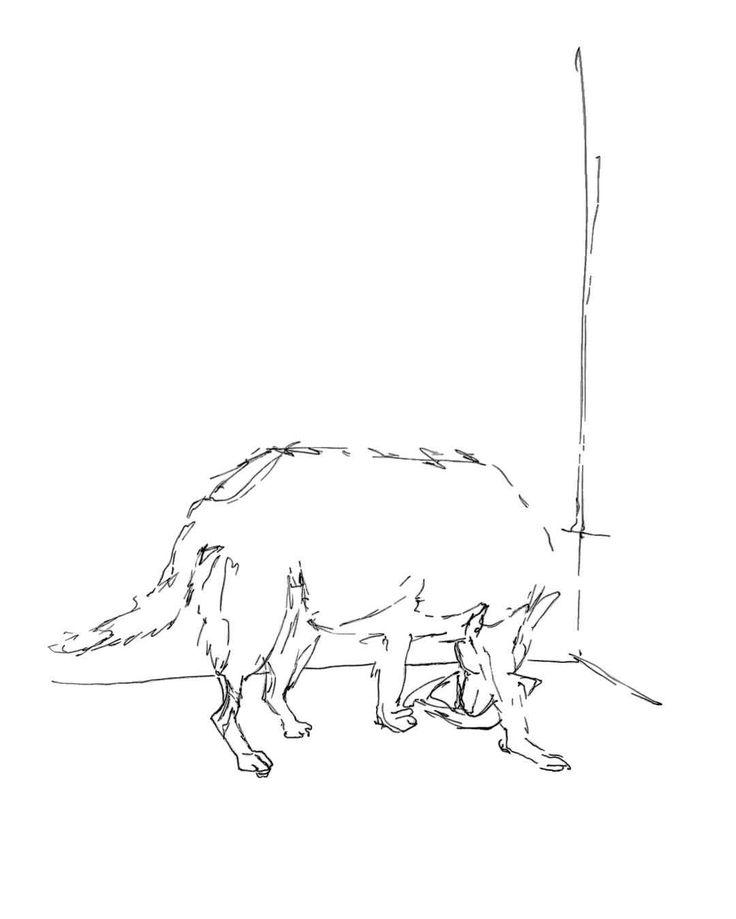 "K i M a r t i n s A r t i s t (@kimartinsartist) no Instagram: ""#dogsketch #drawing #sketch"""