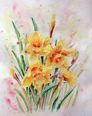 Daffodils / Narcisy