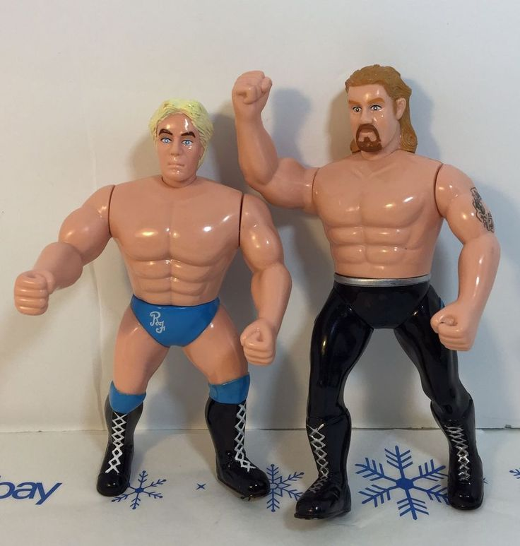 1998 Rick Flair And Dr. David Schultz WCW Wrestling Action Figures Collectible   | eBay