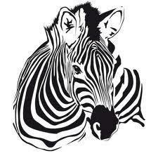 zebra tekening - Google zoeken