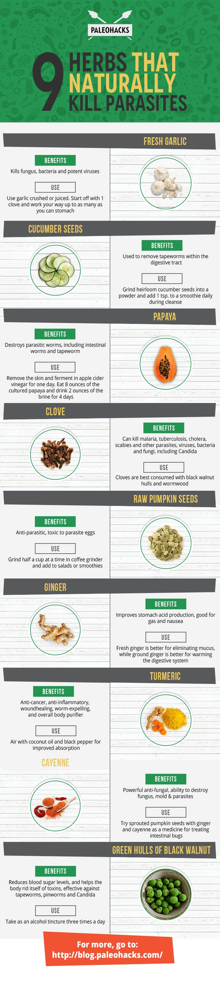These natural remedies fight parasites lurking in your body.