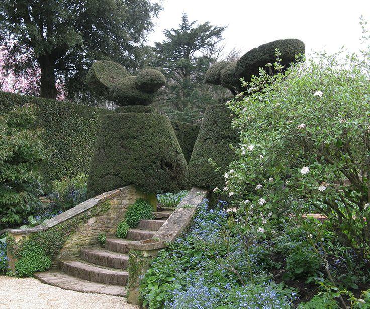 Impressive Hidcote topiary.
