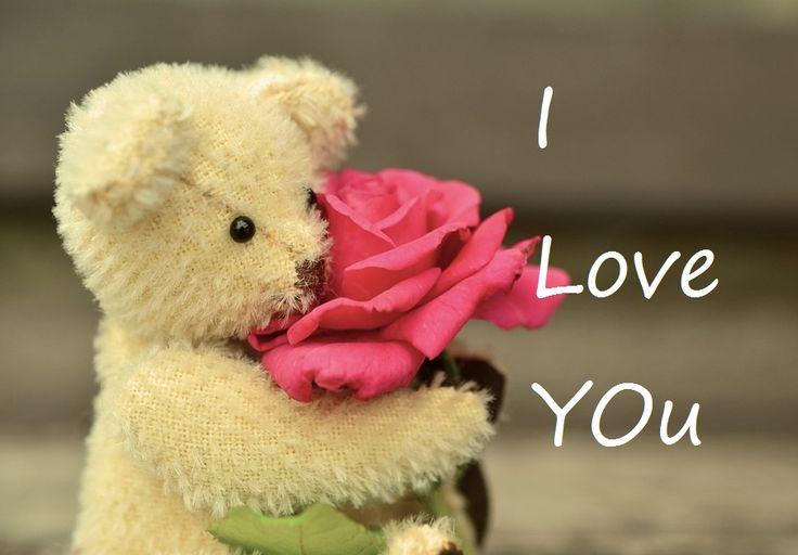 Romantic Teddy Day Wishes in Hindi