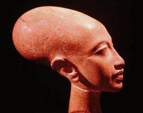 Portrait bust of a daughter of King Akhenaten. Elongated skull shape was idolized during Akhenaten's rule. Both the Pharaoh himself and his offspring had this feature.