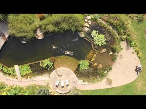 9 best ellicar gardens images on pinterest natural pools for Garden training pool