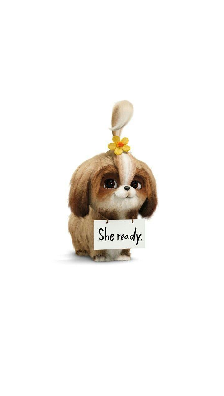 The Secret Life Of Pets Daisy Secret Life Of Pets Cute Cartoon Wallpapers Pets