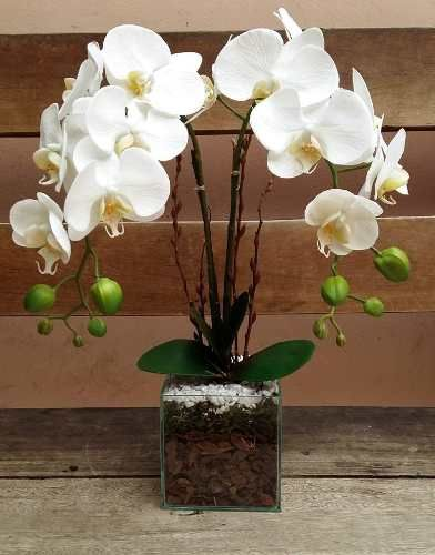 Arranjo Artificial Orquídea Silicone Com 2 Galhos Vaso Vidro                                                                                                                                                                                 Mais