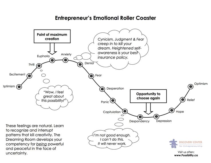 Possibility.ca and Discovery Centre for Entrepreneurship – The Emotional Roller Coaster