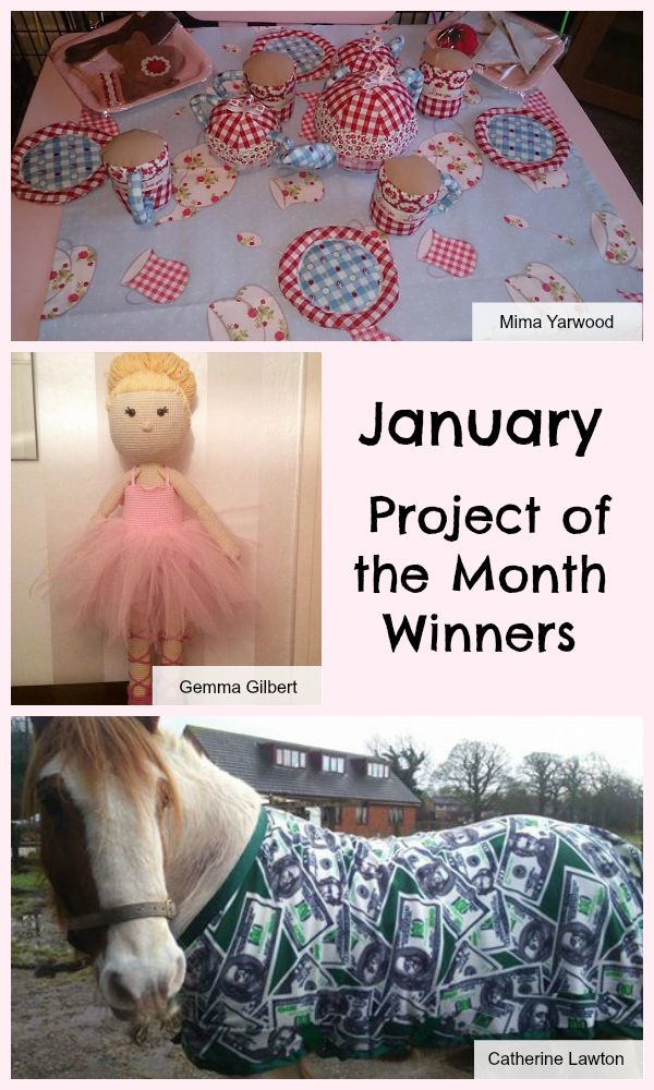 December Project of the Month Challenge Winners