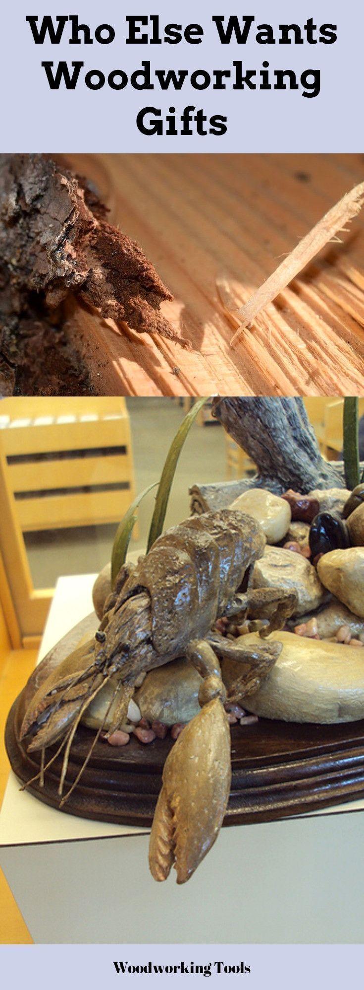 Sublime Tricks Wood Working Desk Shelves Beginner Wood
