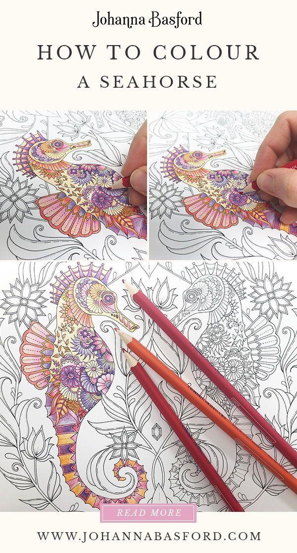 Tutorial How To Colour A Seahorse Johanna Basford Basford Coloring Book Johanna Basford Coloring Book Johanna Basford Coloring