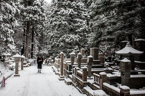 Lone Monk - As we walked down this graveyard shrine trail for about an hour, we would very seldom see other people. Out of nowhere, a monk who had been at a nearby temple came out of the distance towards us. He was wearing nothing but his robes and wooden monk slippers. I don't know exactly how cold it was but it was cold enough for me to be shivering through my 3 layers of winter clothes. This shot was taken at Mount Koya, Japan.