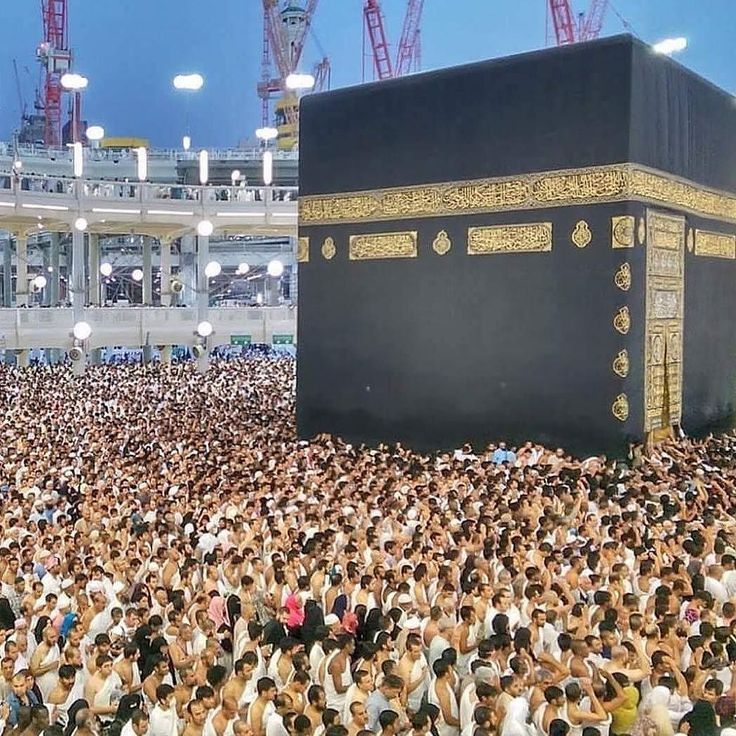Siapa saja orang tercinta yang ingin Jamaah Majelis @TausiyahCinta_ ajak bersama beribadah haji/umroh? . Follow @MekahMadinahID @MekahMadinahID untuk mengobati Rindu Berkunjung ke Rumah Allah .