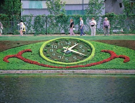 Horloge florale MIM 2000
